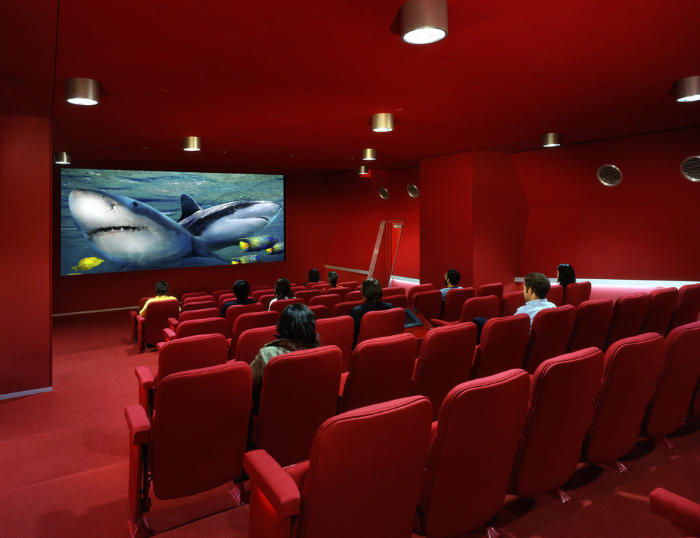 theater+room.jpg