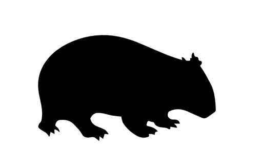 wombat-logo-crop.png