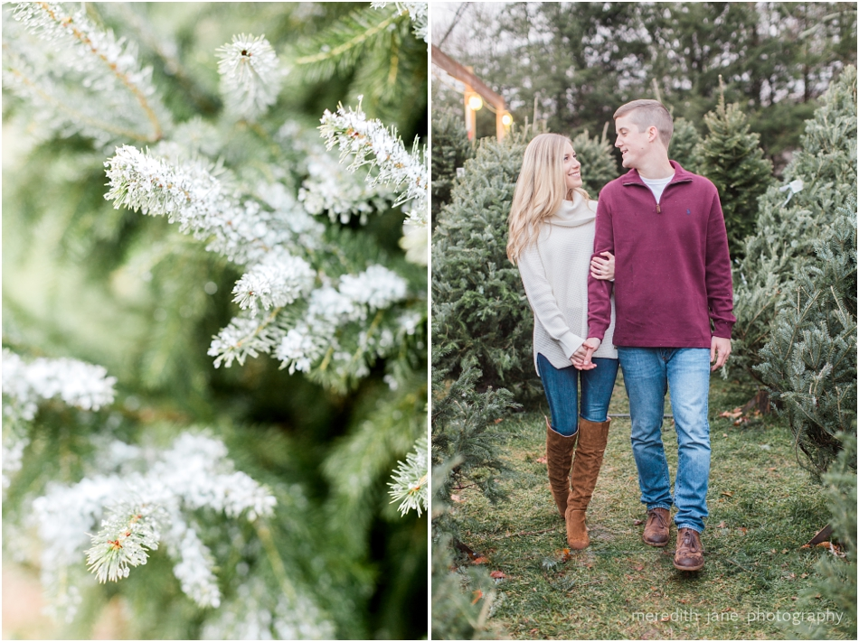 mistletoe_holiday_tree_farm_christmas_boston_massachusetts_engagement_fall_cape_cod_wedding_photographer_Meredith_Jane_Photography_photo_1013.jpg