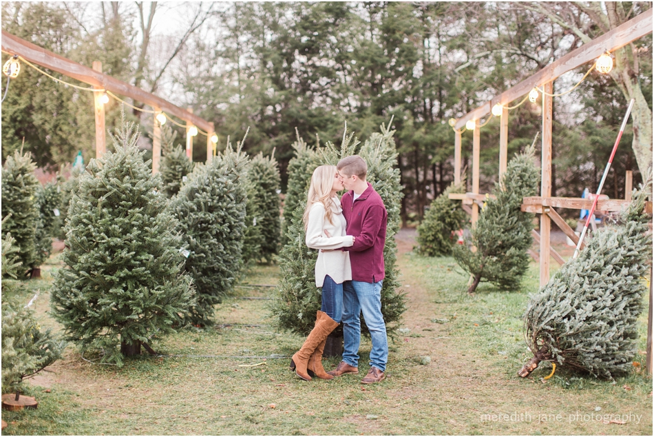 mistletoe_holiday_tree_farm_christmas_boston_massachusetts_engagement_fall_cape_cod_wedding_photographer_Meredith_Jane_Photography_photo_1017.jpg