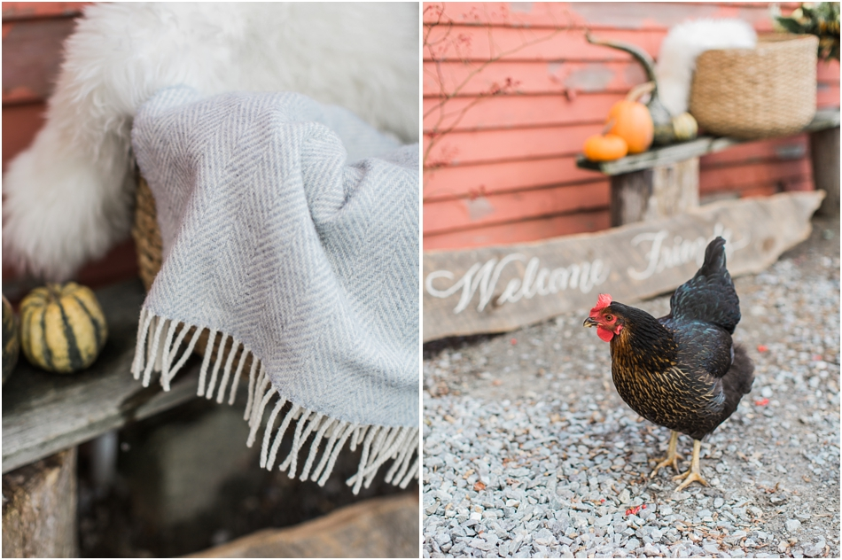 fall_thanksgiving_friendsgiving_cocktails_florals_kelly_golia_kate_murtaugh_wool_whiskey_cape_cod_boston_new_england_wedding_photographer_Meredith_Jane_Photography_photo_0230.jpg