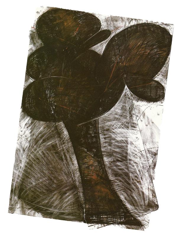 Black Tree, 1982