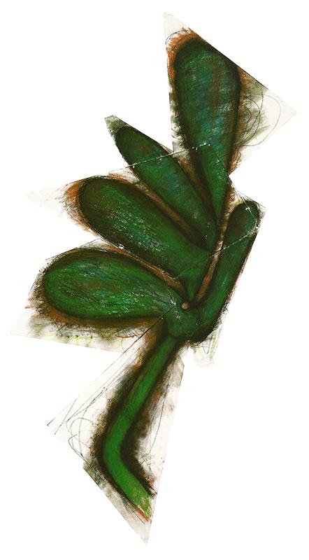 Palm, 1984