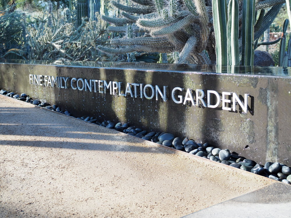 Learn somatic walking and moving meditation surrounded by beauty of Arizona's Desert Botanical Garden.