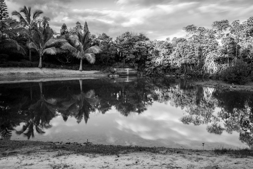 REFLECTING ON NAÏA