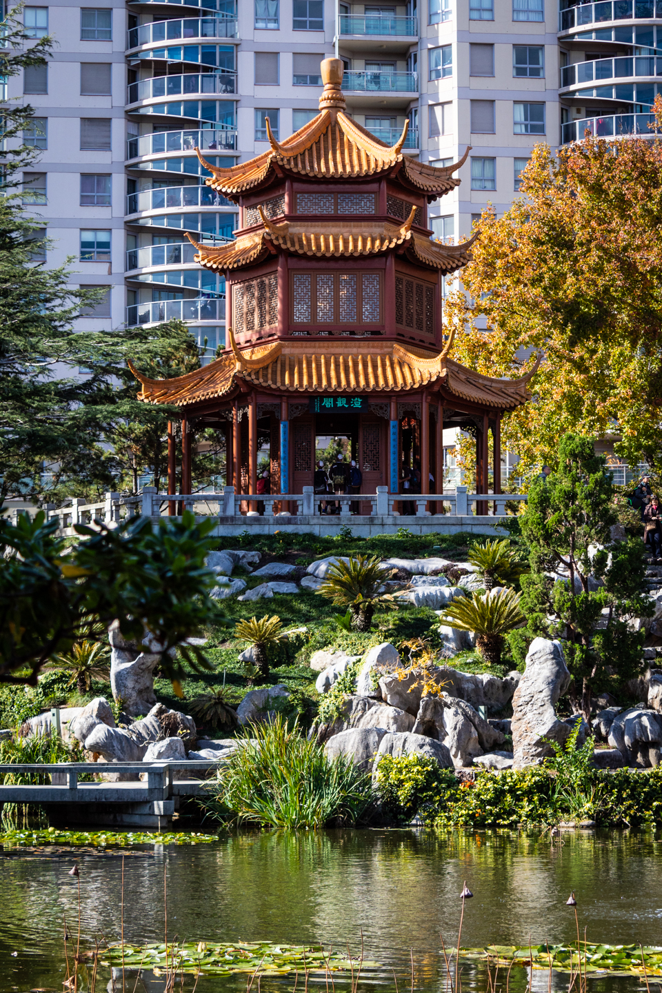 CRH_2018_CHINESE_GARDEN_OF_FRIENDSHIP_3035.jpg