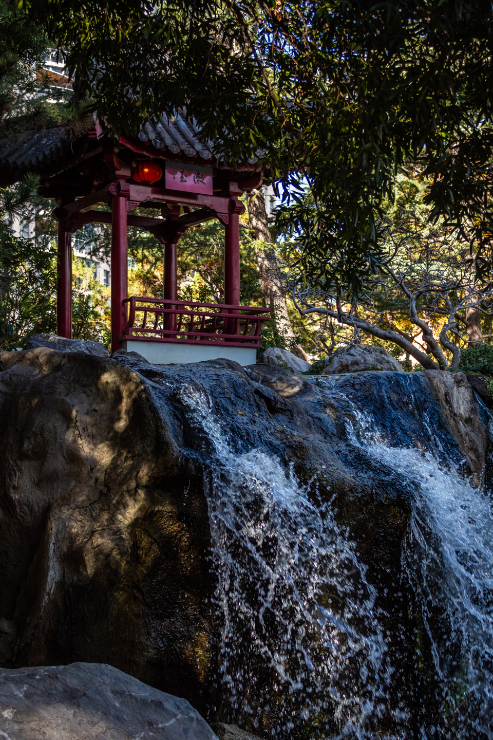 CRH_2018_CHINESE_GARDEN_OF_FRIENDSHIP_3057.jpg