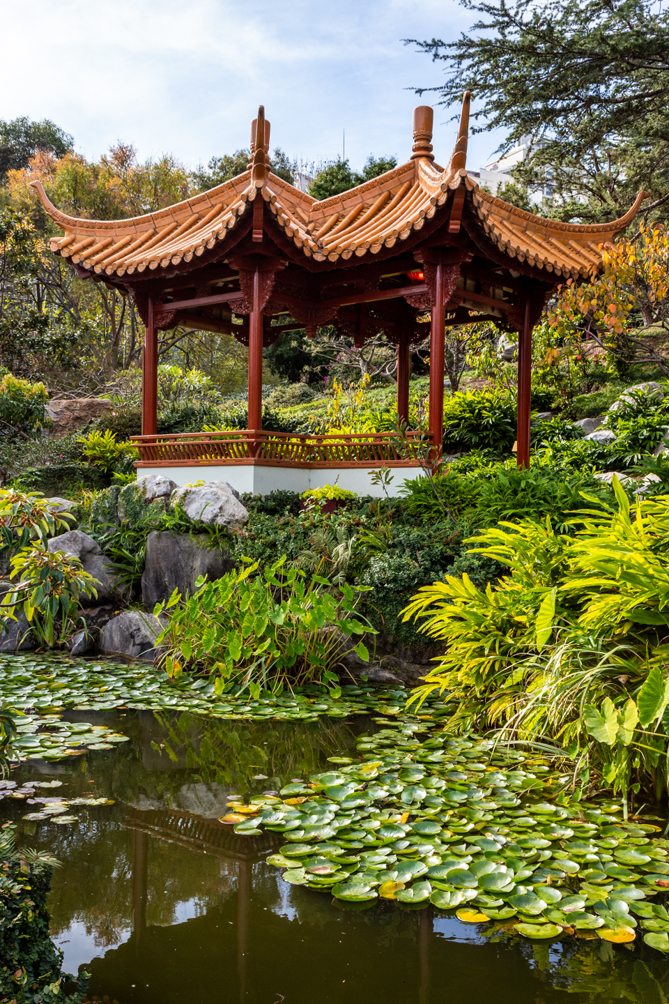 CRH_2018_CHINESE_GARDEN_OF_FRIENDSHIP_3094.jpg