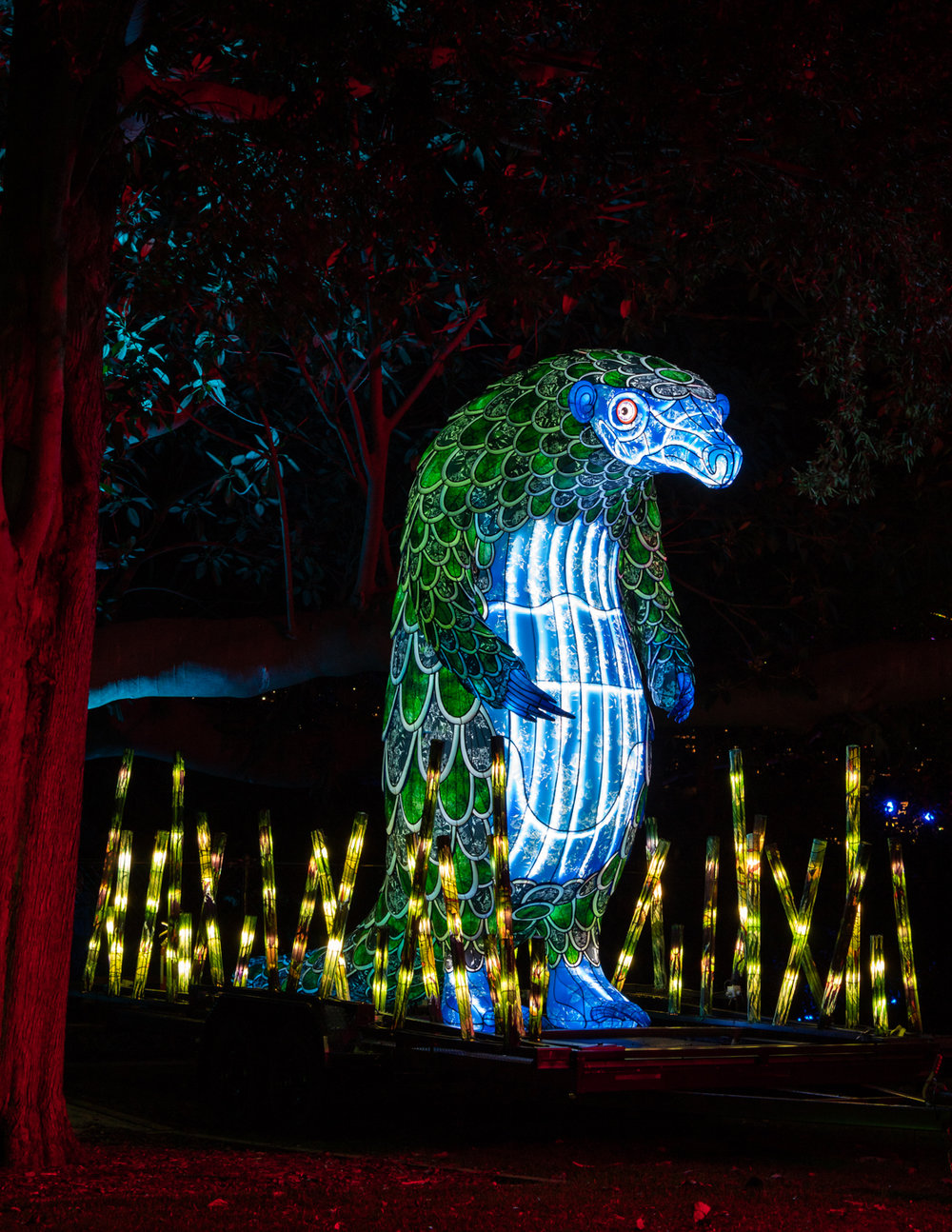 CRH_2018_NIGHT_ZOO_3210.jpg
