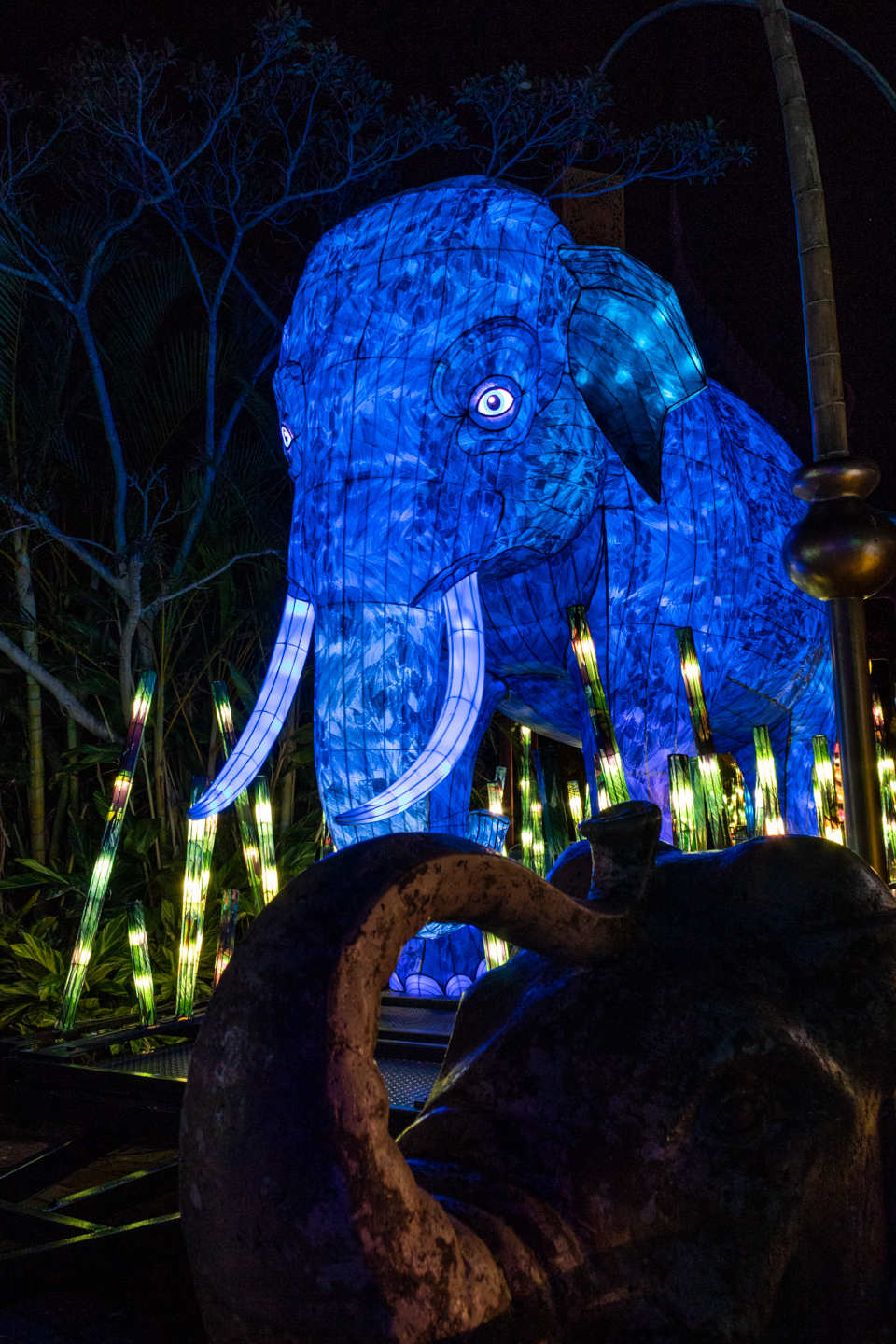 CRH_2018_NIGHT_ZOO_3232.jpg