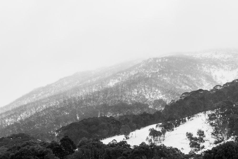 CRH_2018_A_DAY_IN_THE_SNOW_3421.jpg