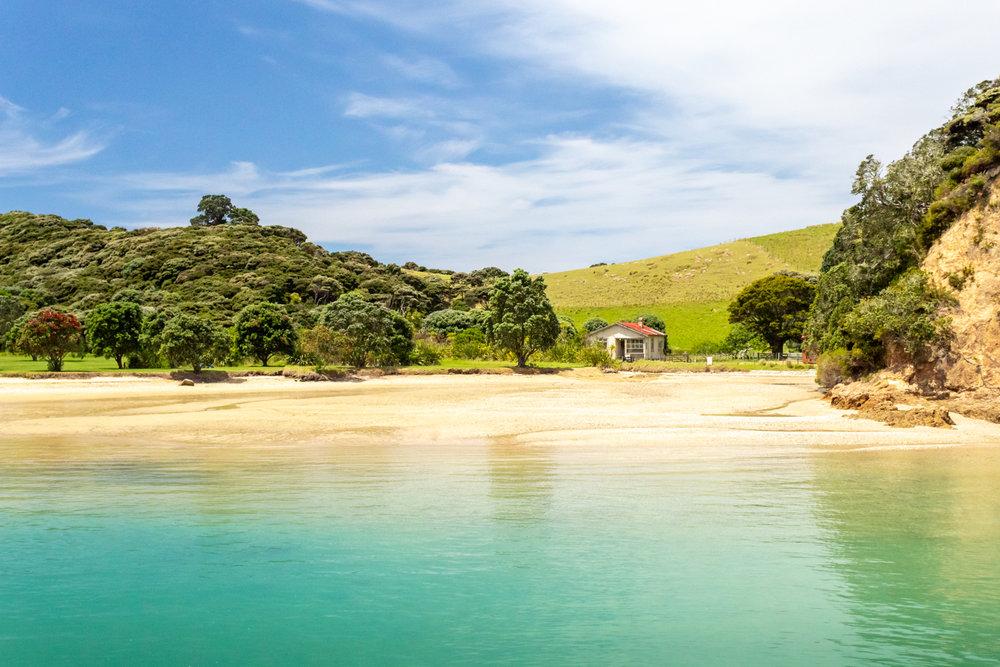 CRH_2018_NZ-D3-PAIHIA_3949.jpg