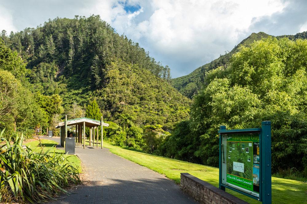 CRH_2018_NZ_D5_THE_COROMANDEL_II_4119.jpg