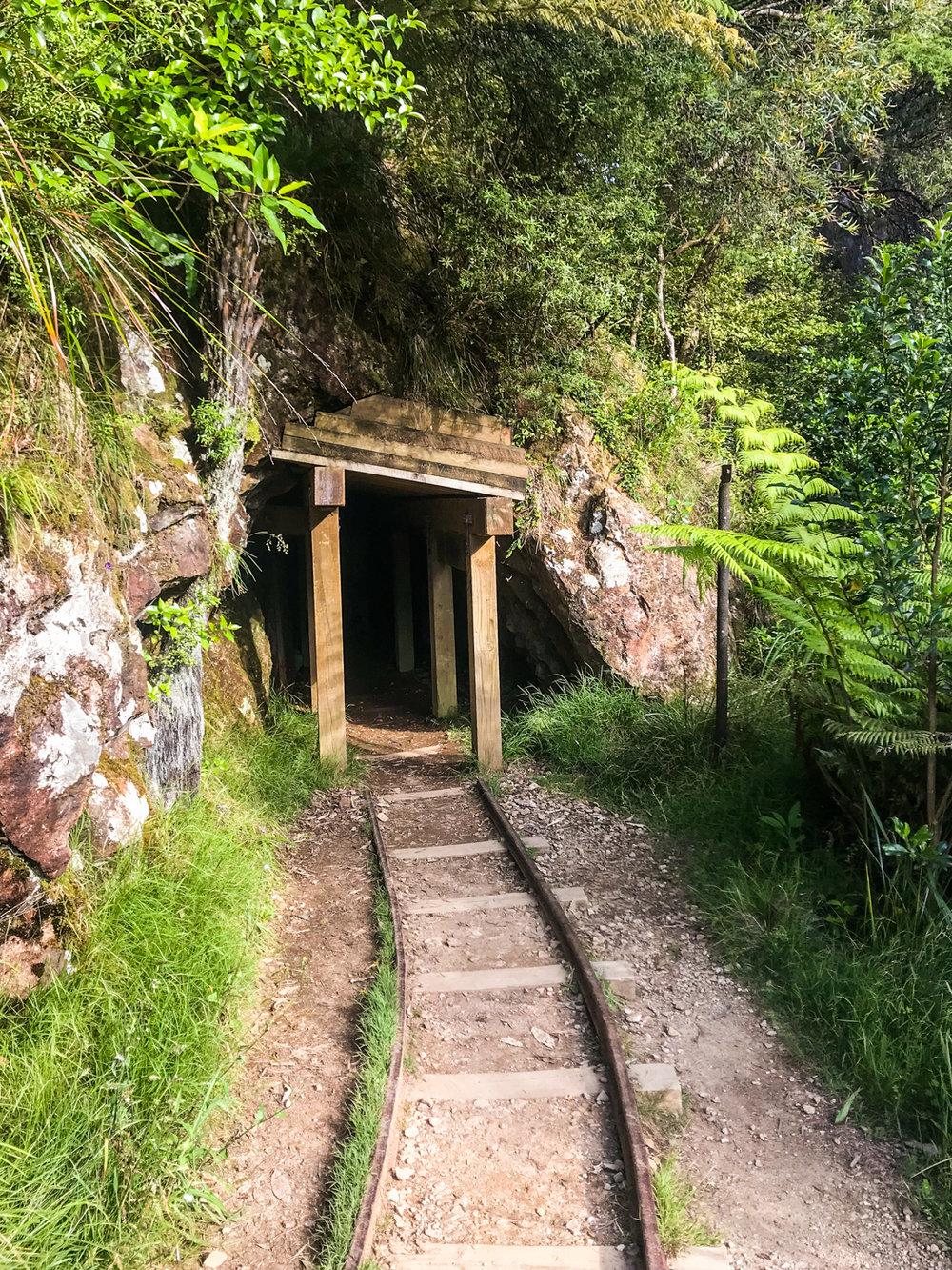 CRH_2018_NZ_D5_THE_COROMANDEL_II_4122-2.jpg