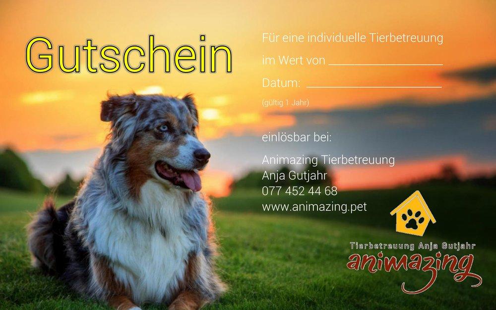 Gutschein-Hund-Aussie.jpg