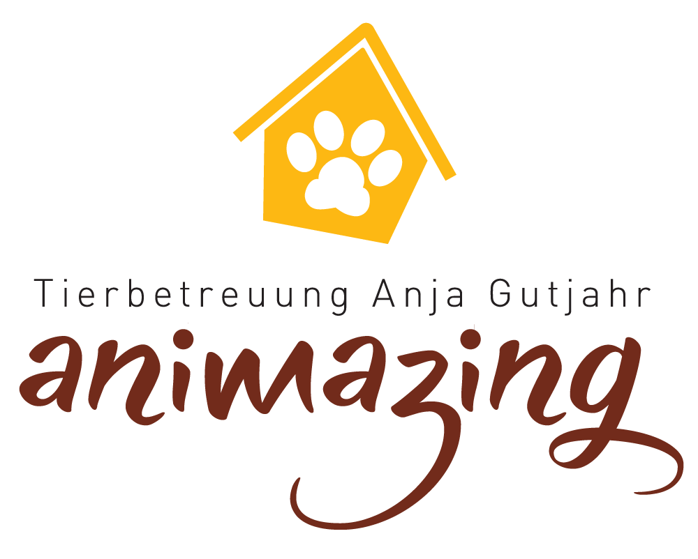 Logo Animazing transparent Web.png