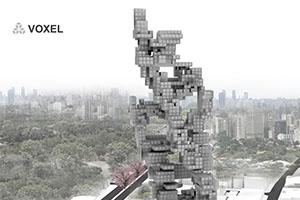 SKYSCRAPER VOXEL  2015 I SÃO PAULO
