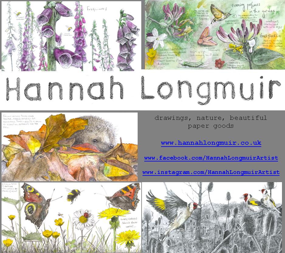 Hannah Longmuir Image.png