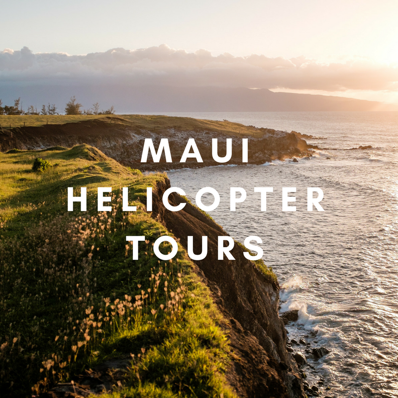 mauihelicoptertours.png
