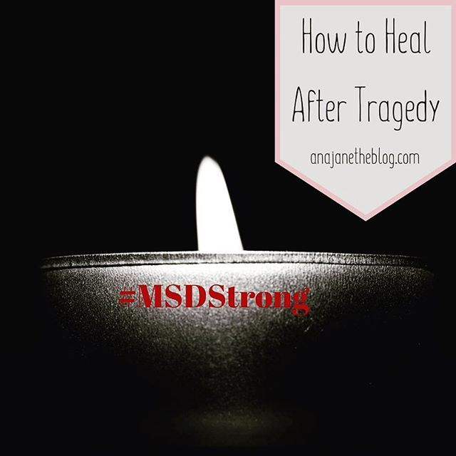 The saddest post that I've ever written for sure. My community has been struck by tragedy and there are only so many things we can do to help and heal. Check out the post if you are grieving or want to help. bit.ly/healintragedy #msdstrong #parklandflorida #eaglestrong #survivorsarefighters