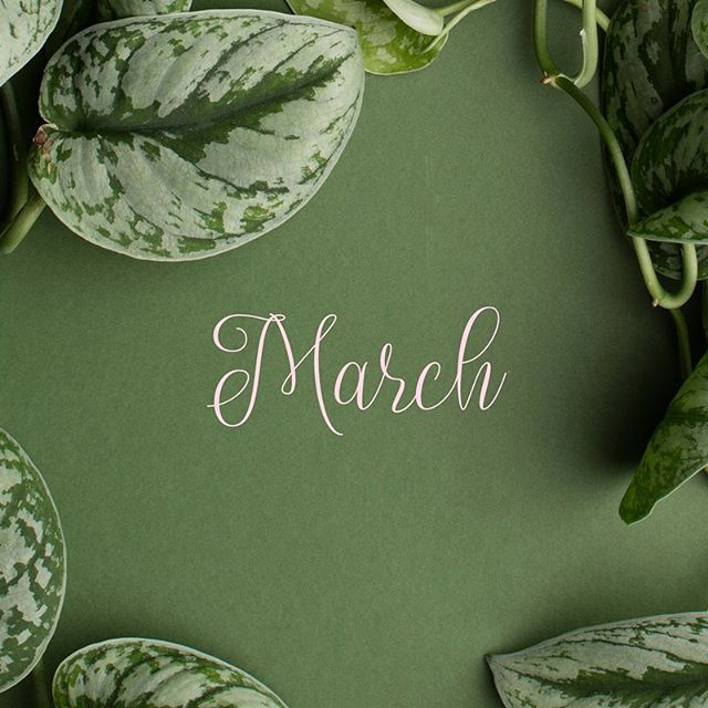 Welcome March! I've been anxiously waiting for you! February was a month of transition and waiting but March is filled with breathtaking promise! What are some of your March plans that you are excited for?? • • • • • • • #anajanetheblog #anajane #lifestyleblogger #travelblogger #plannerblogger #millennialgirl #millennialblogger #adulting #adultingblogger #adultingainteasy #blackgirlsrock #blackswhoblog #sofloblogger #flblogger #sflbloggers #ftlbloggers #browngirlbloggers #blackbloggers #brownbloggers #blkcreatives #march2018 #hellomarch