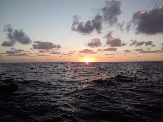 ibiza-daysailing sunset