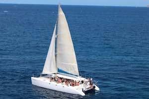 Catamaran 79 pax.jpeg