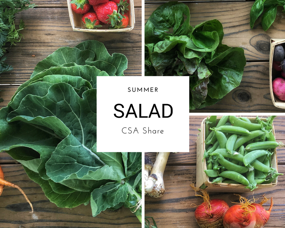 Columbus CSA Share Salad Size