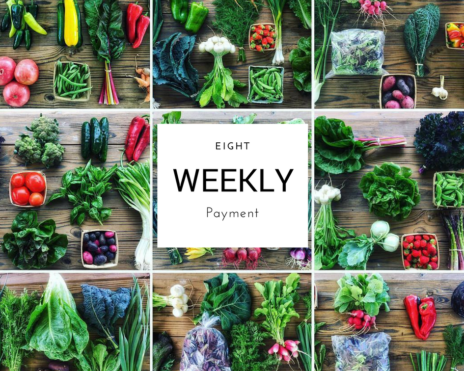 Summer CSA Program Weekly Payments