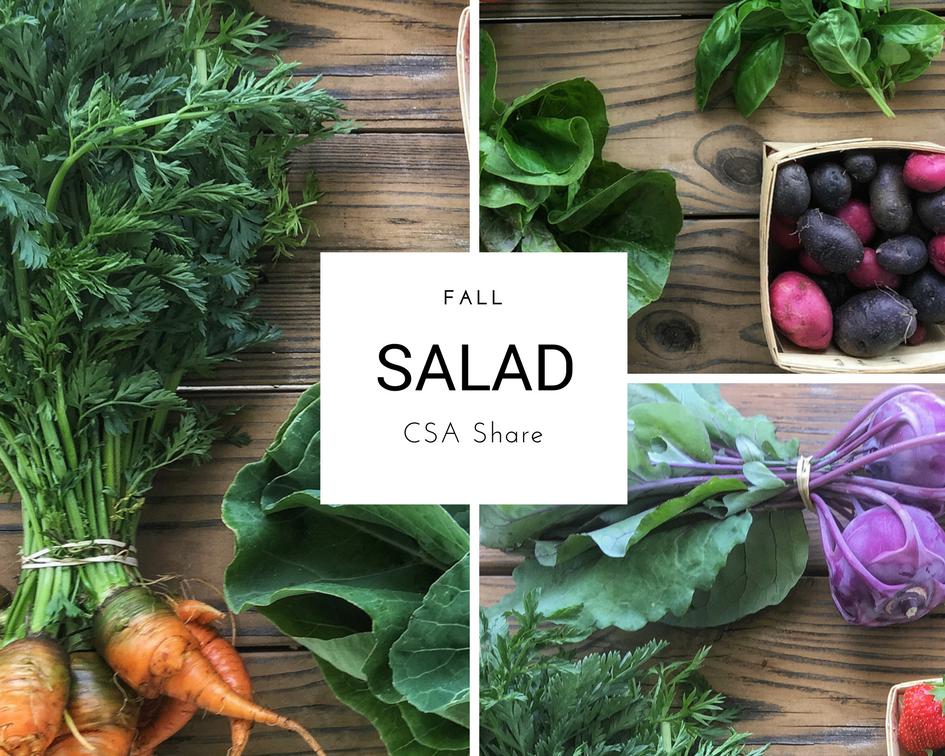 CSA Share Salad Size Columbus