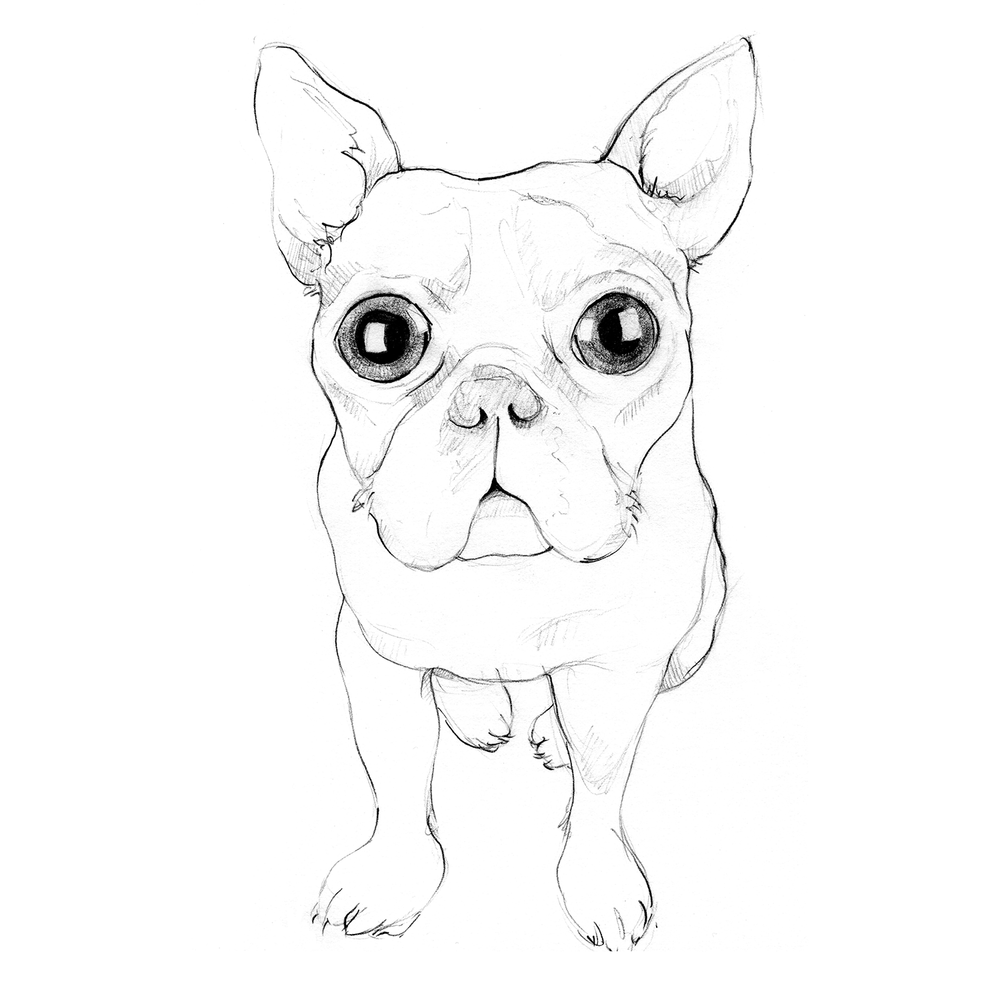 doggie.png