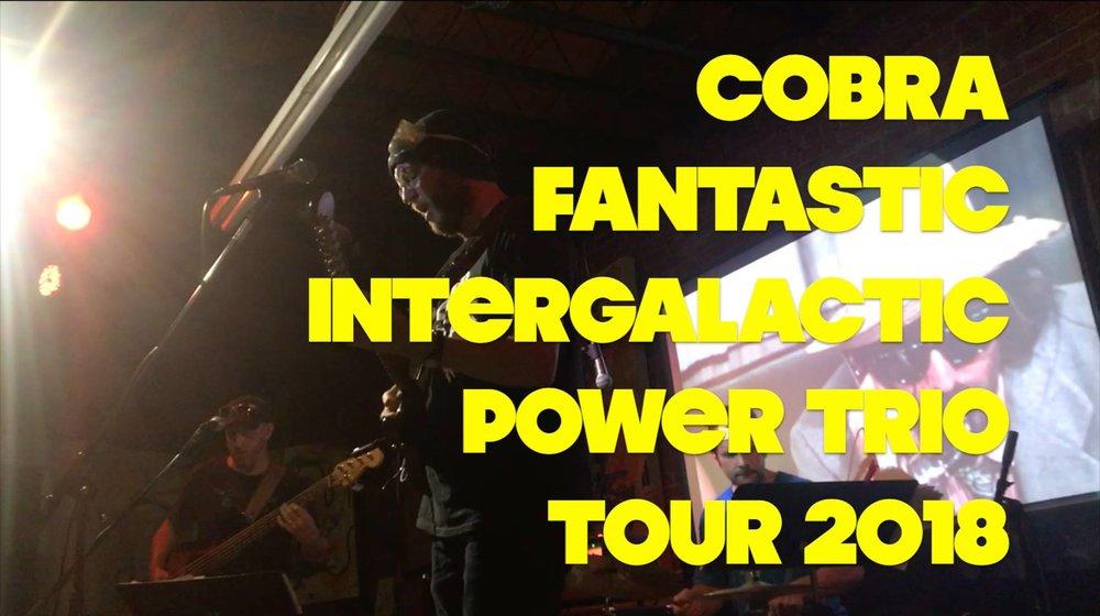 Cobra Fantastic.jpg