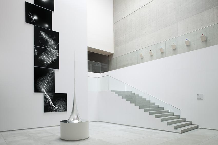 Marugame,Genichiro-Inokuma Museum of Contemporary Art, Kagawa, 2010