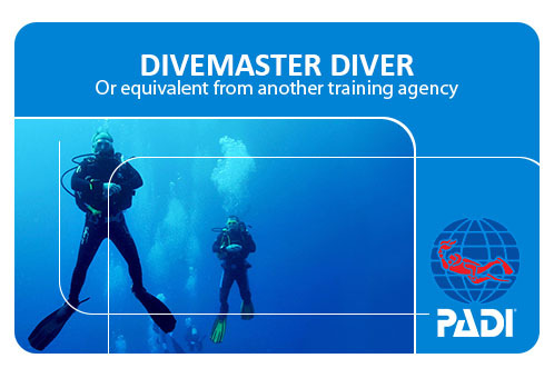 2 coconut tree divers performing a hover in the divemaster internship program.