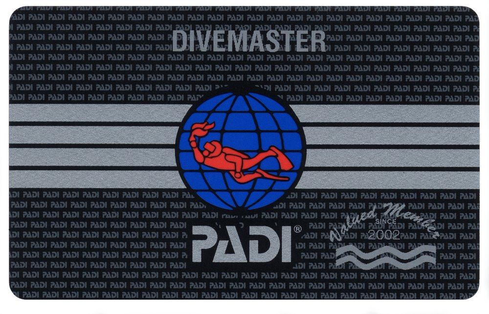 PADI divemaster certification card with the PADI logo on it that is earned at coconut tree divers, the intern program is a 6 week professional training program.