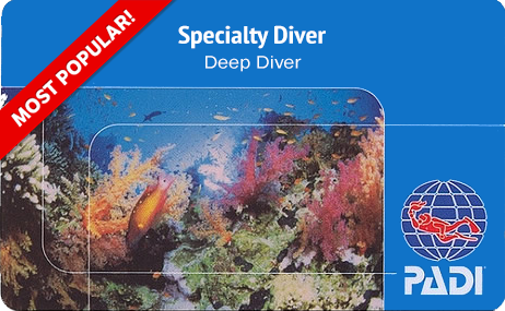 a PADI deep divers scuba diving certification card with a reef in the background