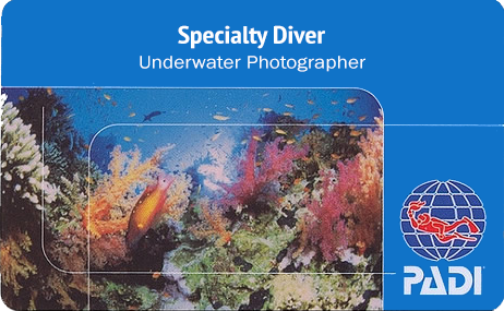 a PADI underwater photographer specialty card with a nice reef in the background.