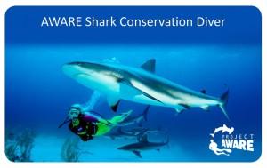 a PADI shark conservation diver card