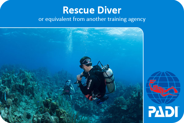 PADI scuba diving rescue course certification card, two divers on the surface and one is holding her fin.