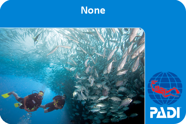 a PADI discover scuba diving certification card with two divers each giving an OK signal.