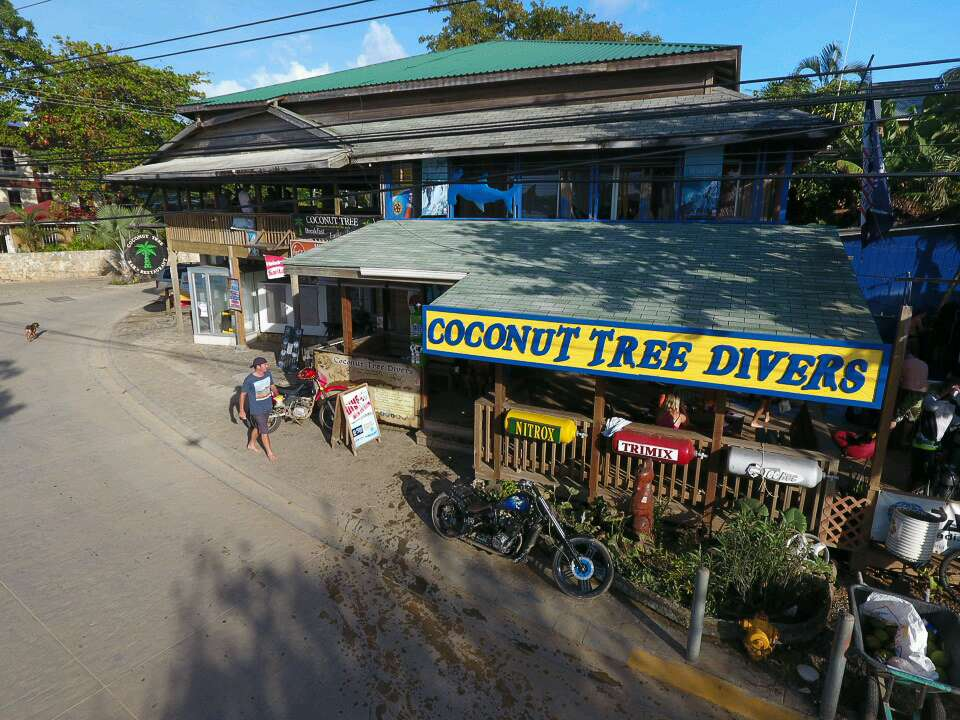 a picture of the store front coconut tree divers in roatan honduras.