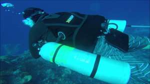 a siedmount tec diver diving along side the reef