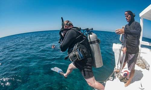 schedules for scuba diving in roatan honduras, with coconut tree divers in west end.