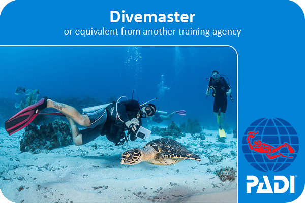 PADI scuba divemaster internship certification card that you earn at Coconut Tree Divers in west end, Roatan Honduras. on the front of the card is a Padi Instructor and an IDC candidate learning skills in the divemaster intern program.