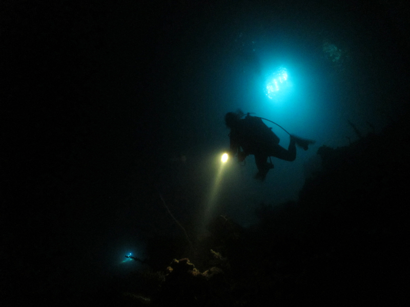The Lads on their night dive out at El Aquario