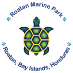 marine park logo, coconit tree divers supports in west end roatan