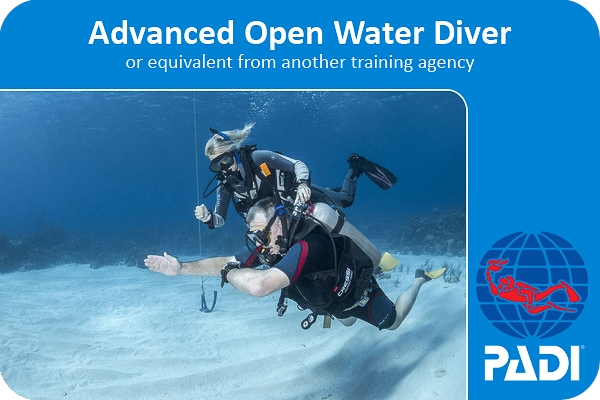 PADI advanced open water diver scuba certification card with coconut tree divers.