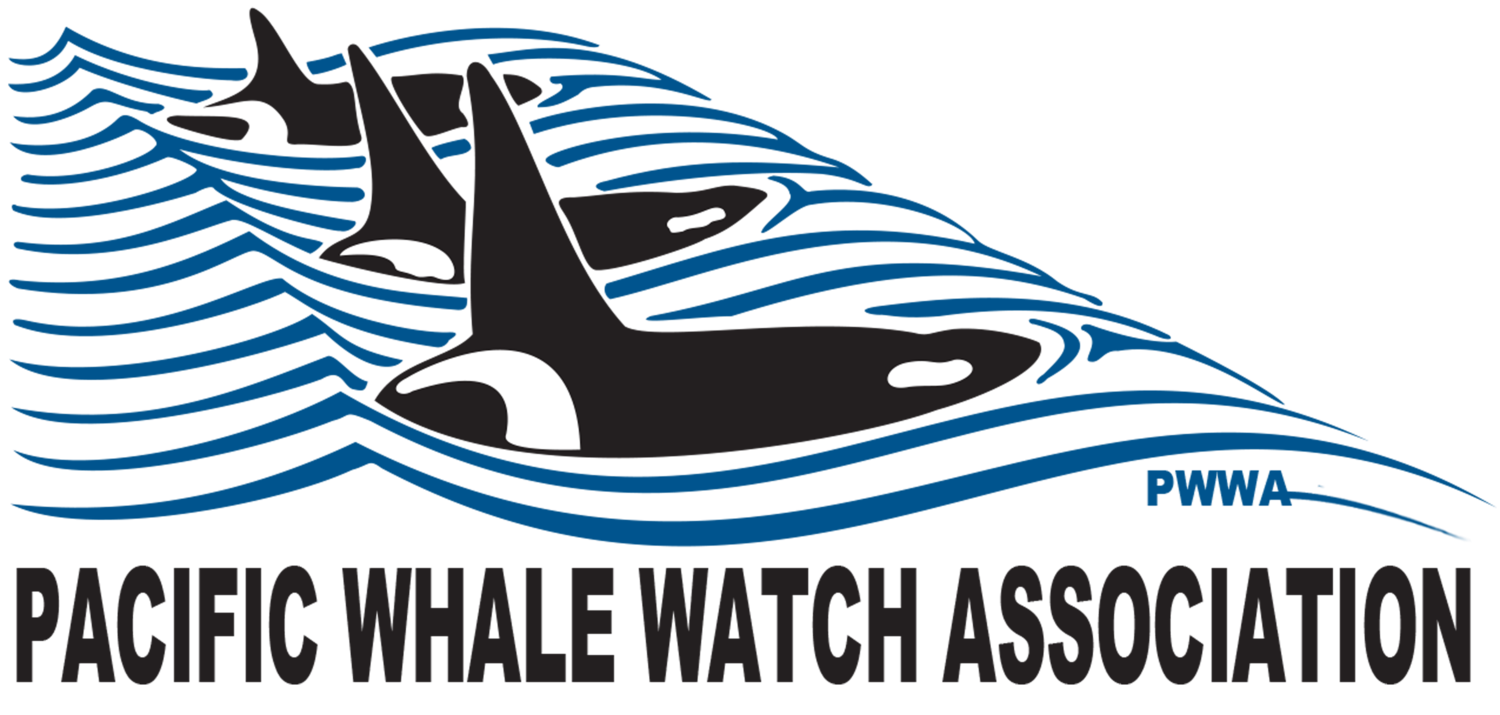 Pacific Whale Watch Association