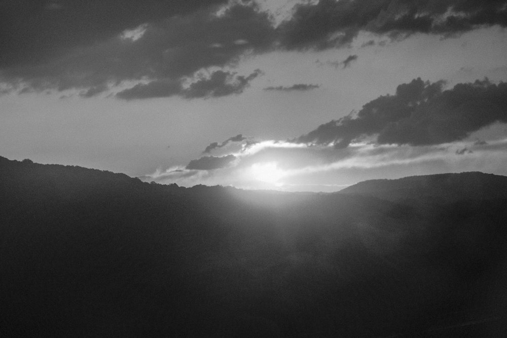 ortiz-new-website-sunest-30.jpg