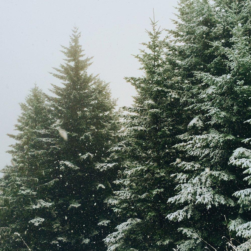Johansen_Viggo_-_Radosne_Boże_Narodzenie.jpg